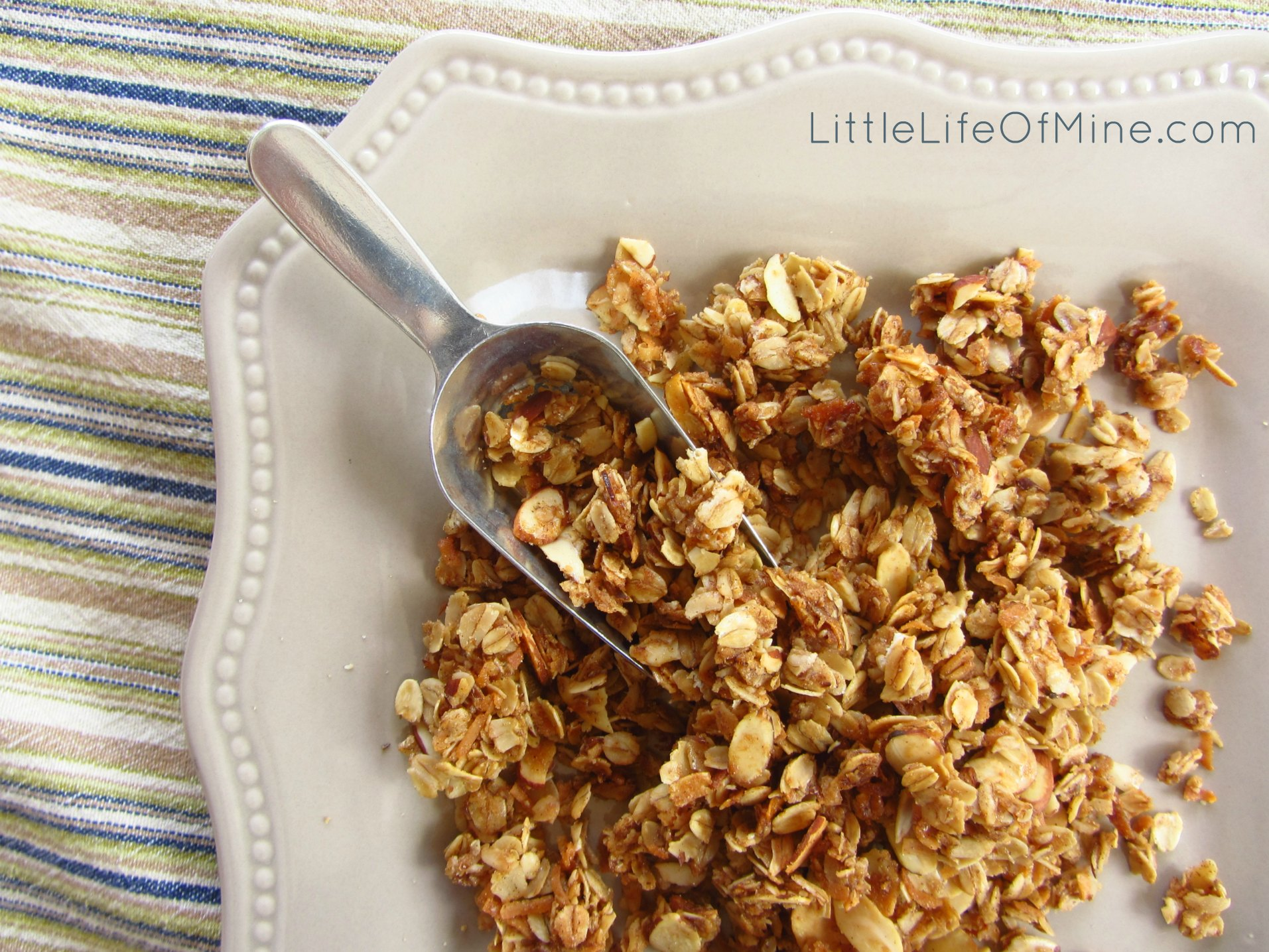 Homemade Almond Coconut Granola