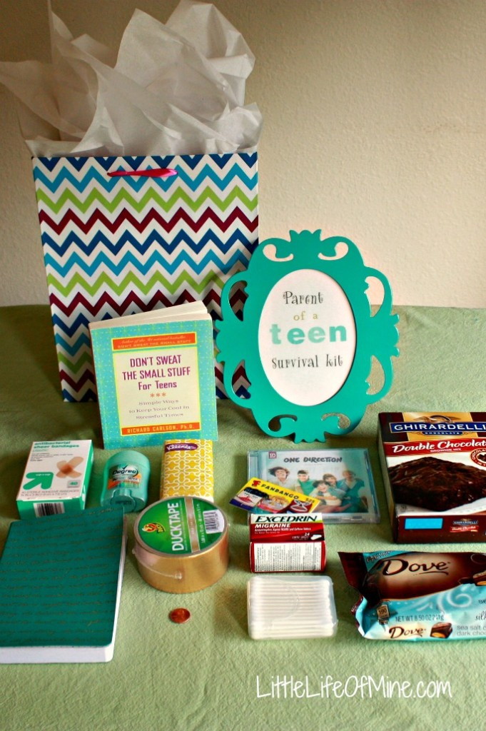 Parent of a Teen Survival Kit 3