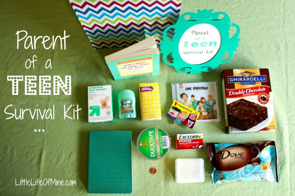 Parent of a Teen Survival Kit 4