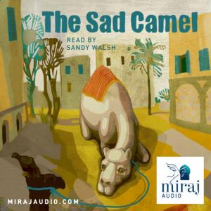 the sad camel