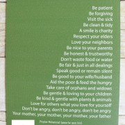 Green Prophetic Advice Canvas