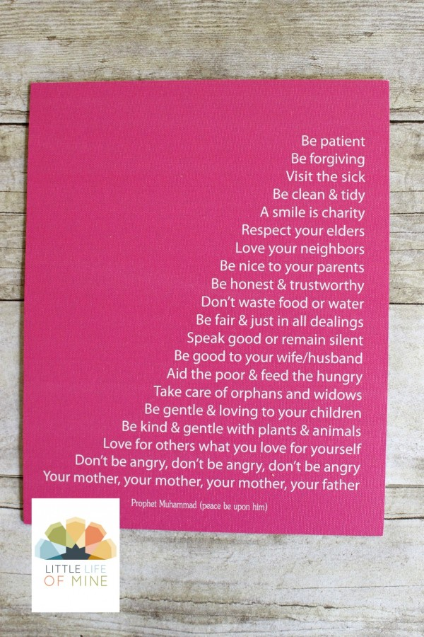 Pink Prophetic Advice Canvas